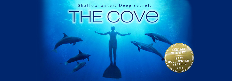 a personal reflection on the cove a documentary by louie psihoyos In a yearly drive, hundreds of these beautiful ocean dwellers are herded into a blind dead-end cove and slaughtered by japanese commercial fishers.